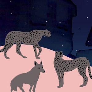 짐승들의 밤