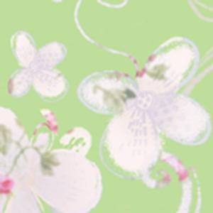 [합본]꽃비혼