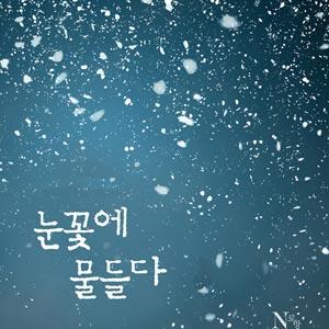 [합본] 눈꽃에 물들다