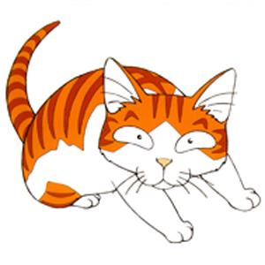 CAT (캣)